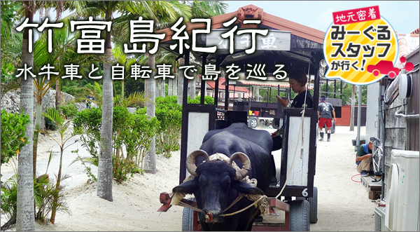 竹富島紀行|水牛車と自転車で島を巡る